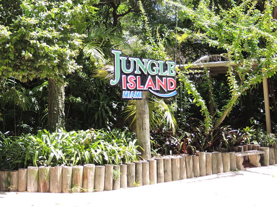 Jungle Island Miami Car Service